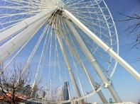 Ferris Wheel at Navy Pier
